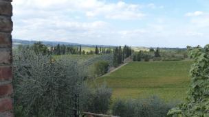 Toscane 013 5